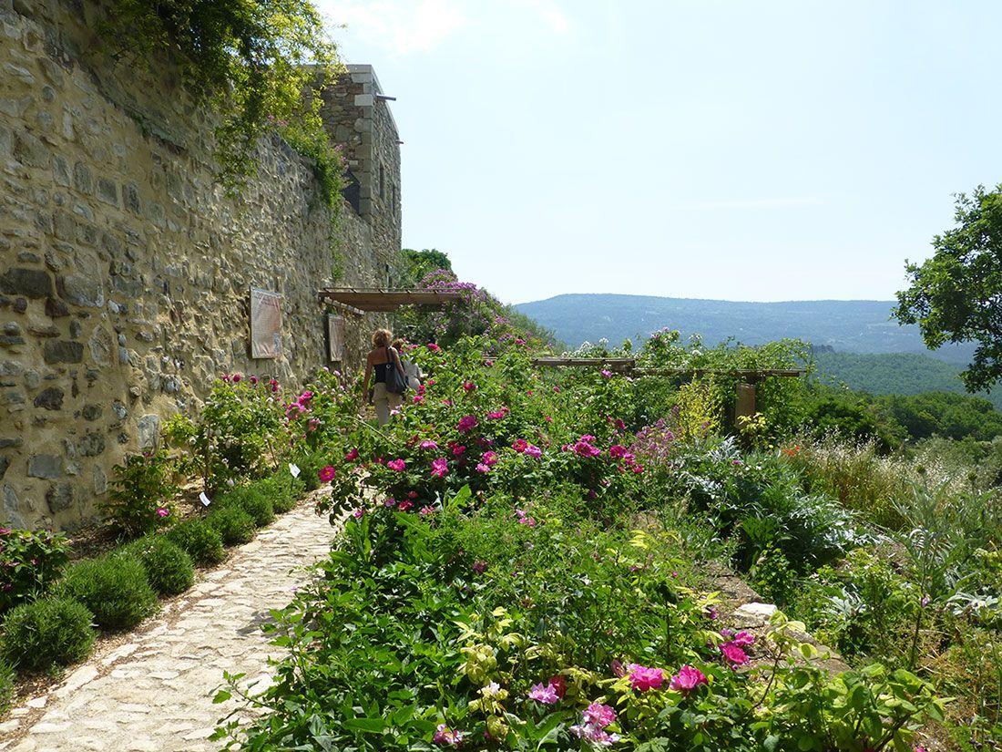 Voie des Roses à l'Abbaye de Valsaintes