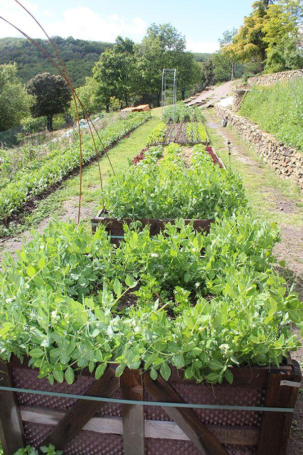 Potager agroécologique des Jardins de l'Abbaye de Valsaintes