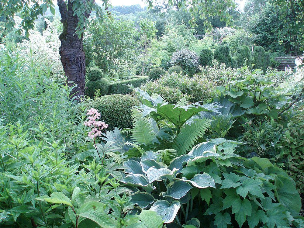 Plantes vivaces du Jardin d'Adoué