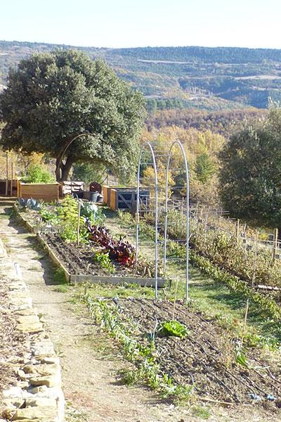 Formation sur le potager agroécologique