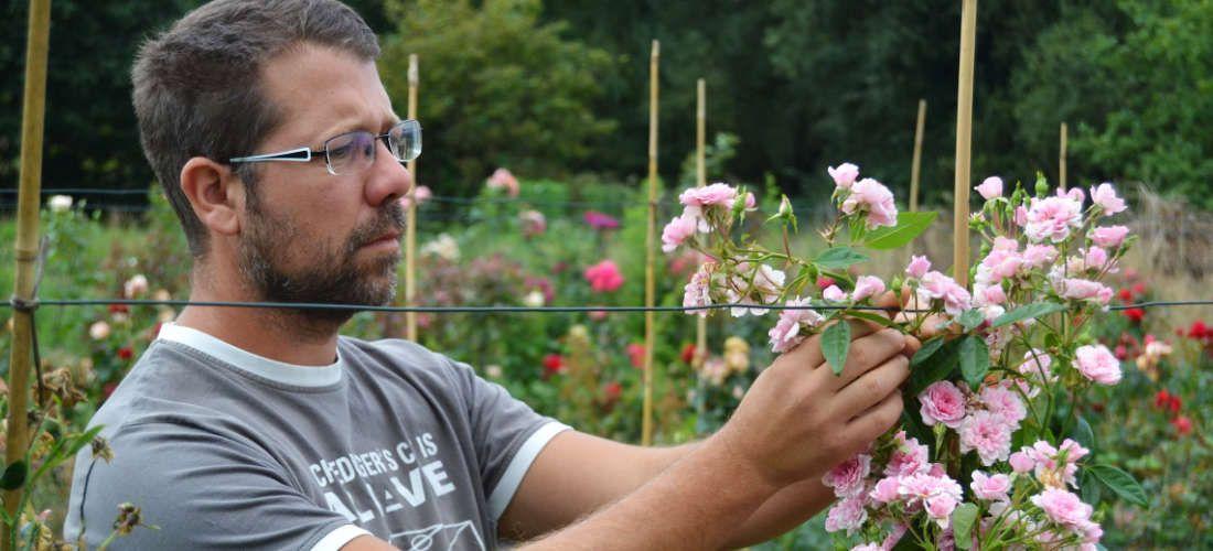 Rencontre avec Frédéric Pierre, producteur de rosiers anciens, botaniques et modernes