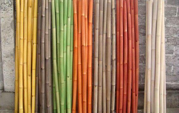 Troncs sec colorés