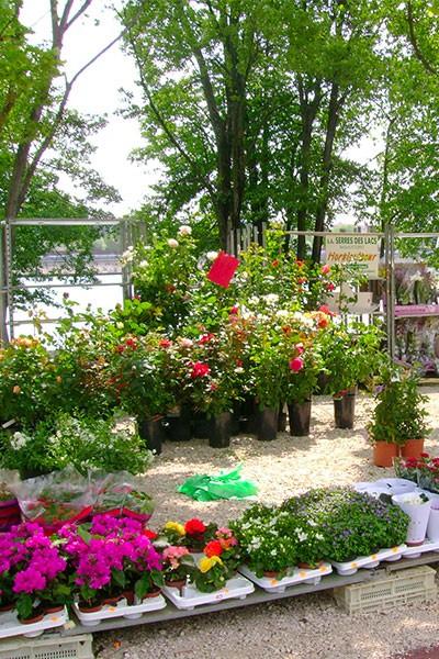 Foire aux Fleurs à Guilherand-Granges