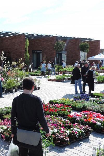 Marché aux fleurs et aux plantes de Balma
