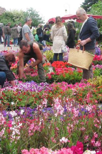 Marché aux fleurs et aux plants de Blagnac