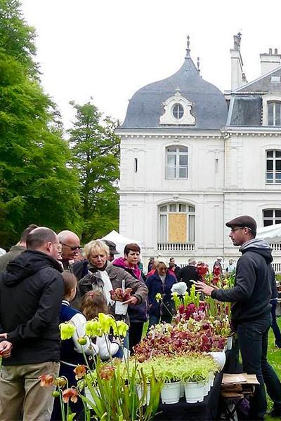 Marché aux fleurs de Saint-Malo