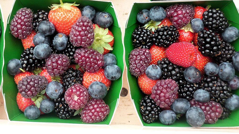 Barquette de fruits de la pépinière Des fruits des fleurs