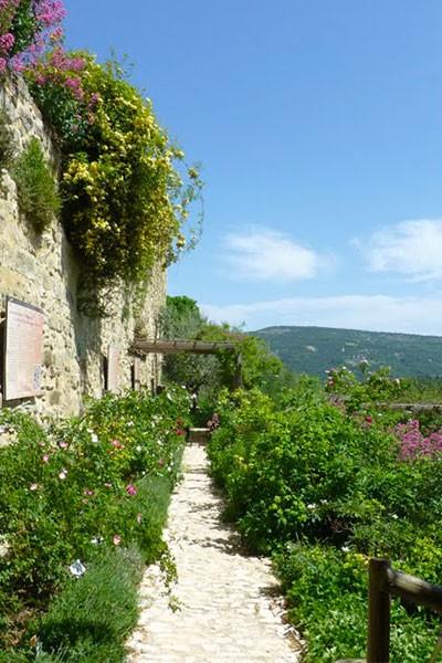 L'Abbaye en Roses à Valsaintes