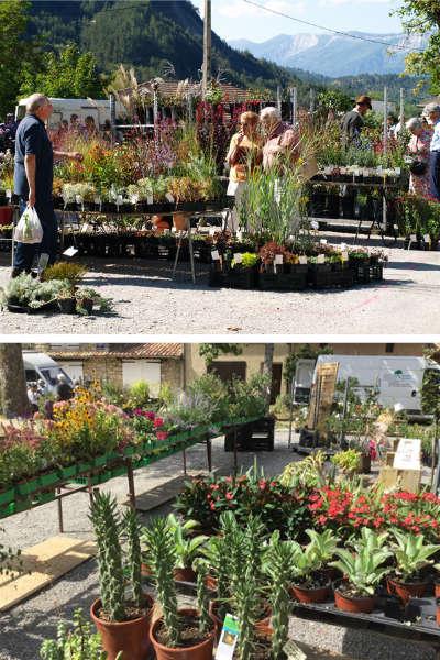 Fête des Plantes rares de Châtillon en Diois
