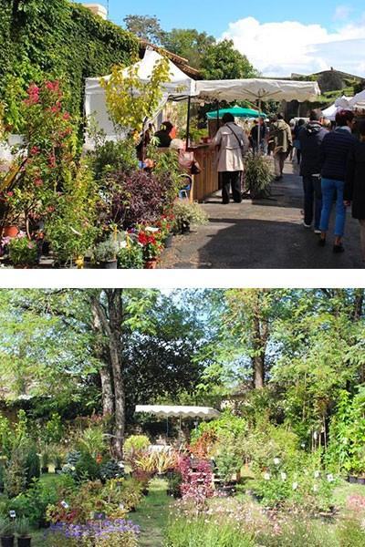 Jardin d'automne à Blaye