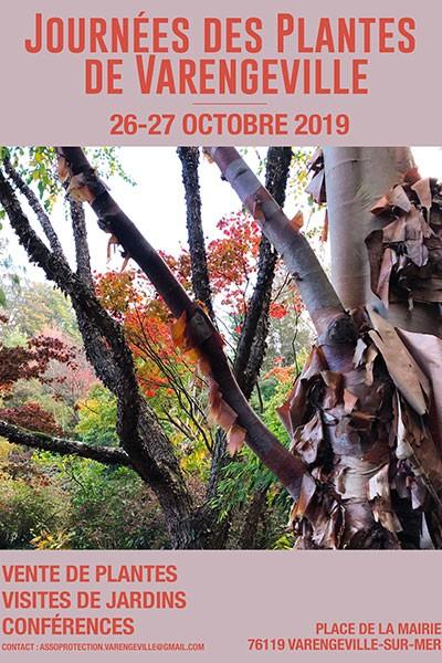 Journées des Plantes de Varengeville-sur-Mer