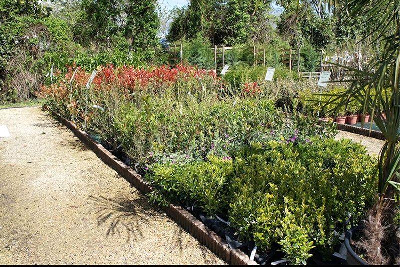 La Jardinerie Carté