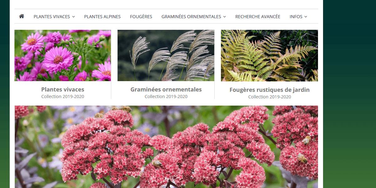Notre catalogue en ligne change de nom !