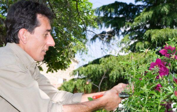 Rencontre avec Jean-Yves Meignen, jardinier de l'Abbaye de Valsaintes