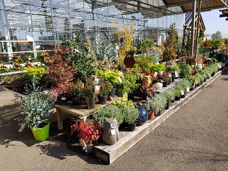 Jardinerie des Jardins du Sonnenhof