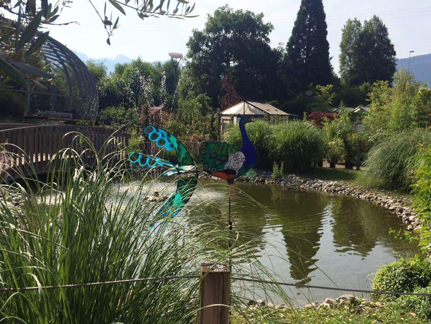L'étang de la Jardinerie Plaisirs Verts