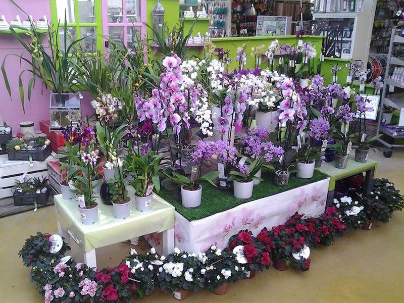 La fleuristerie des jardins de Beaune