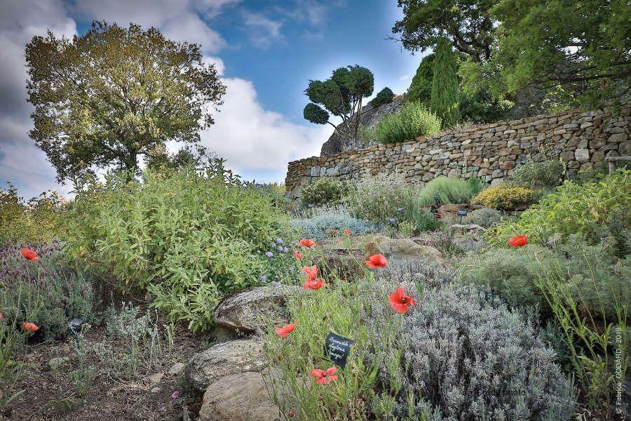 jardin-sec-abbaye-valsaintes