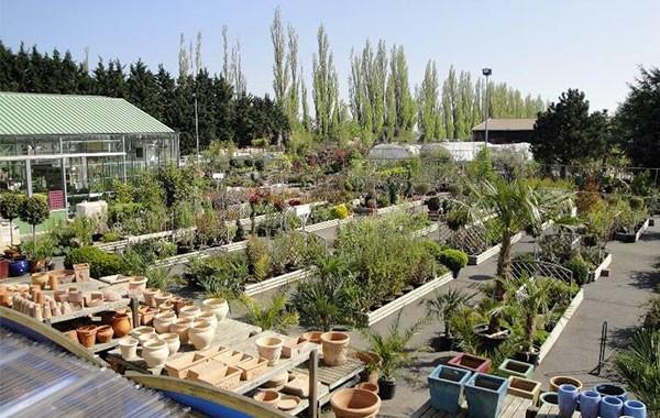 Jardinerie des Pépinières Chatelain