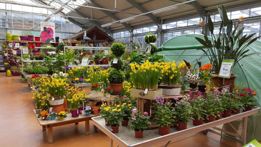 La Jardinerie Plaisirs Verts