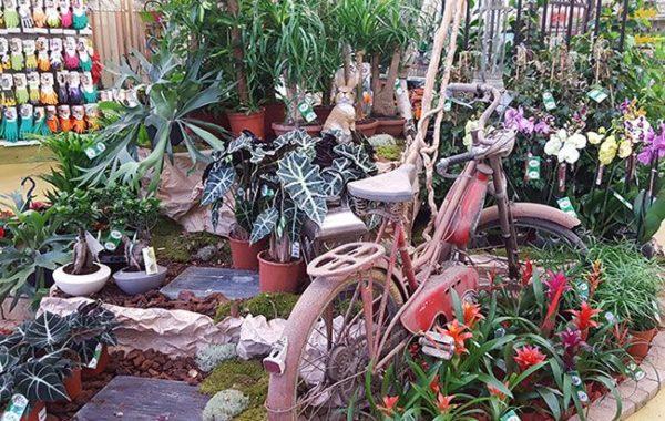 Jardins de beaune