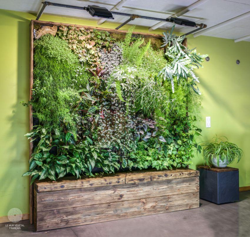 Mur végétal Ouranos