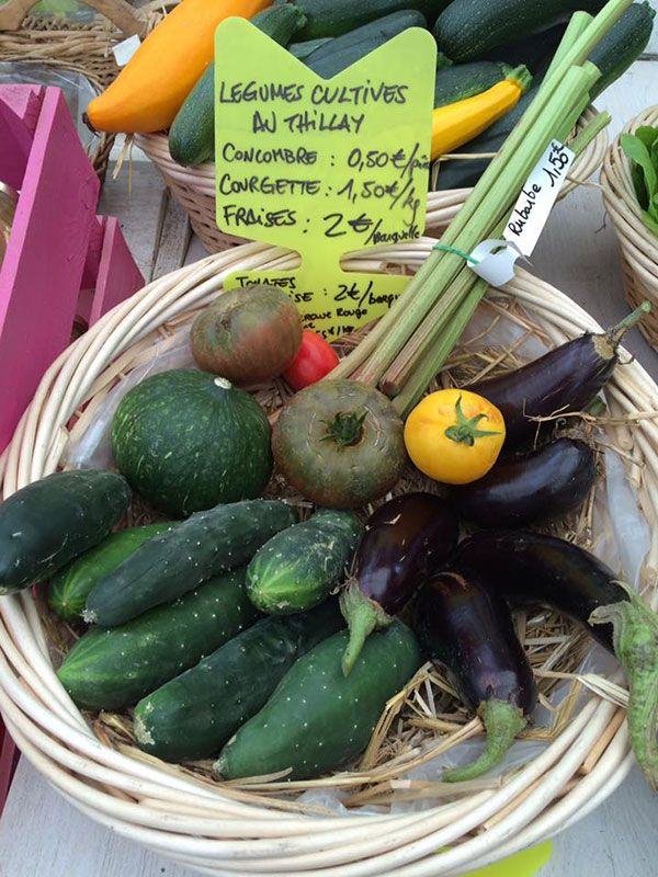 Production de légumes des Pépinières Chatelain
