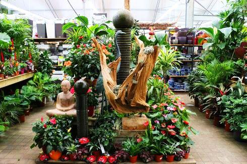 Serre chaude jardinerie JardiPus