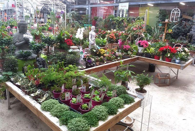 Jardinerie Baron