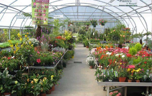 Jardinerie Atlantic Vert la Baule