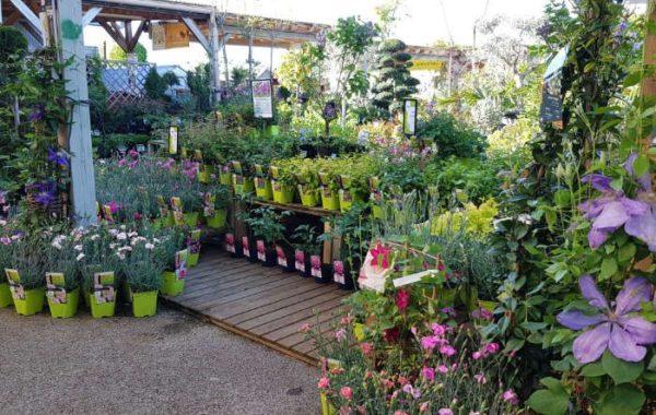 Jardinerie Le Jardin des Saules