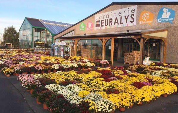 Jardinerie Euralys La Gorgue
