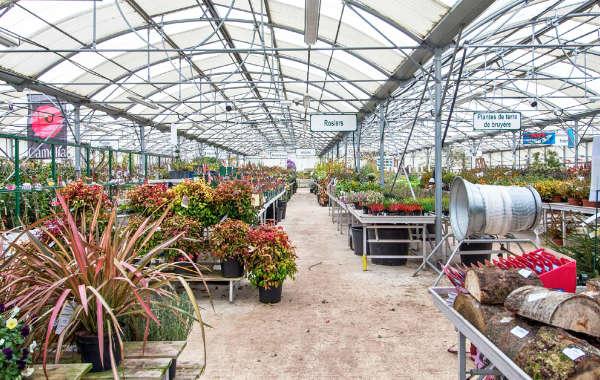 Jardinerie Wohlgemuth