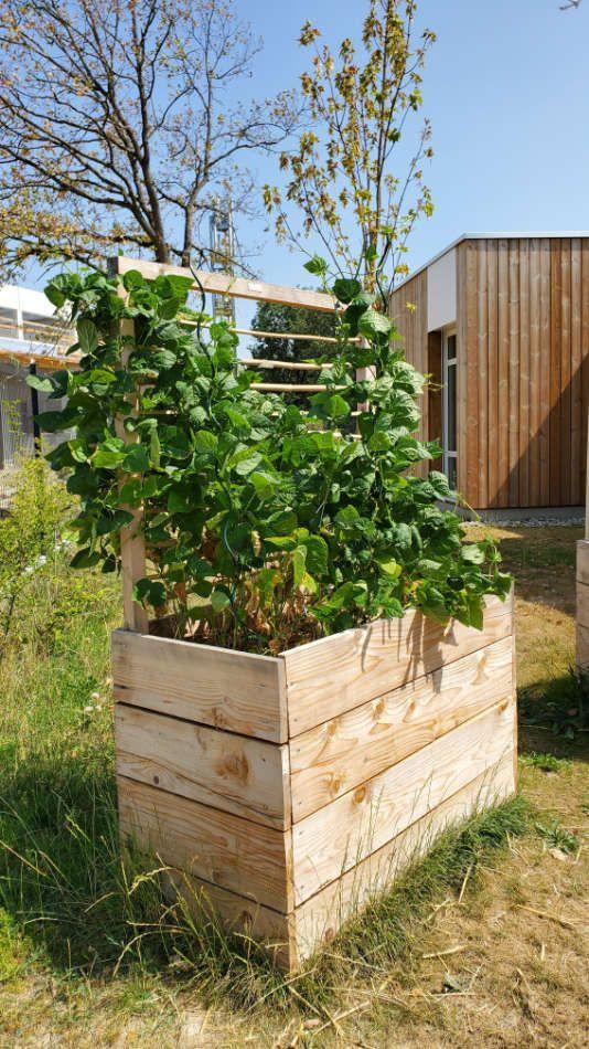 Création de jardinière en bois