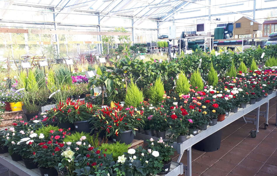 Jardinerie Les Jardins de Maryline