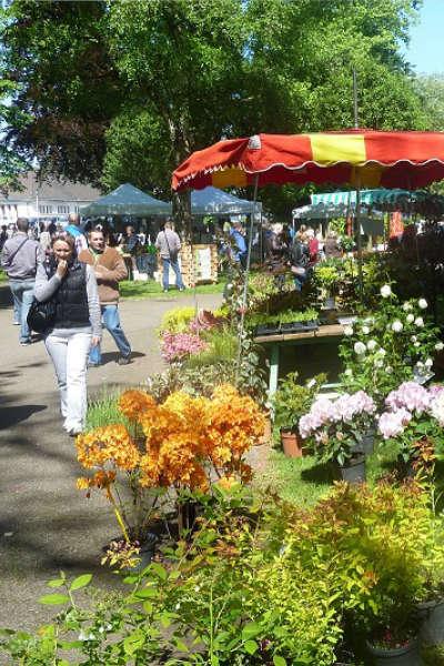 L'Espace Jardin – Marché aux plantes et aux fleurs de Haguenau