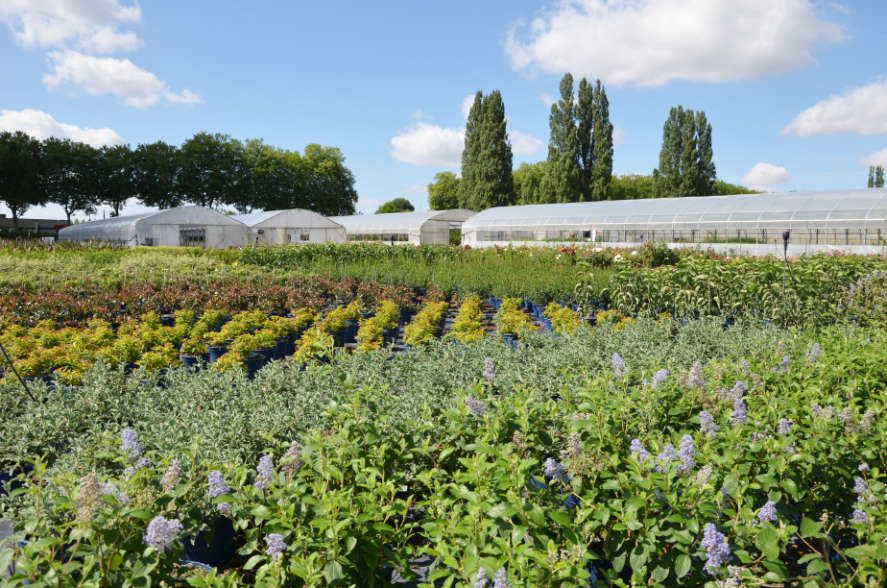 La Jardinerie Poullain
