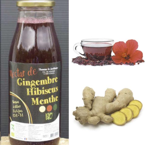 Boissons concentrées gingembre curcuma hibiscus menthe