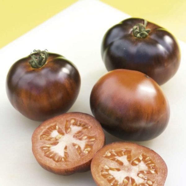 Tomate de collection Indigo Appel