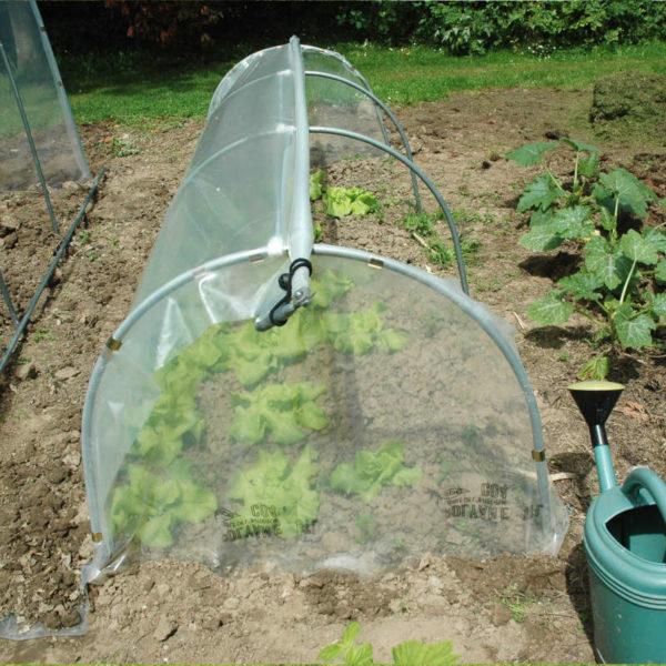 Serre à plants avec aérations latérales