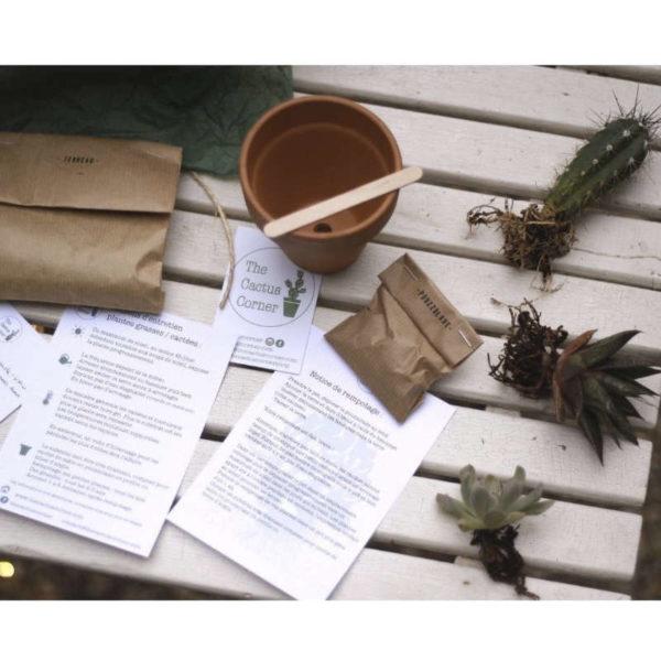 Kit jardinage Créer une composition de cactées et succulentes