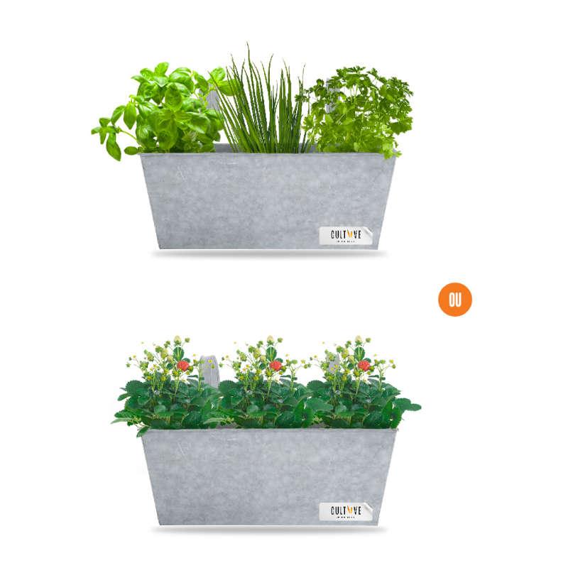 Bac potager en zinc 3 plants