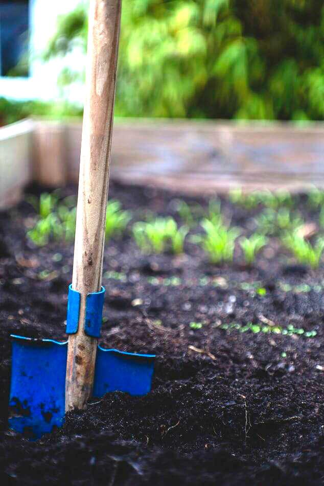 Entretien de potager hors sol de Cultivee