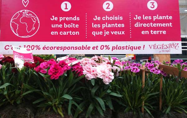 Plantes zéro déchet de Vive le Végétal