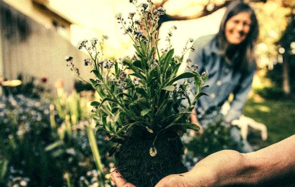 Les bienfaits du jardinage ou «garden therapy»