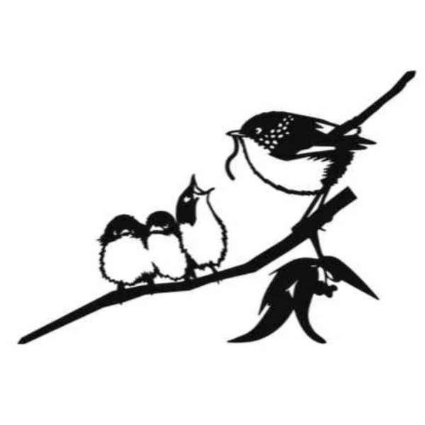 Troglodyte mignon et ses petits