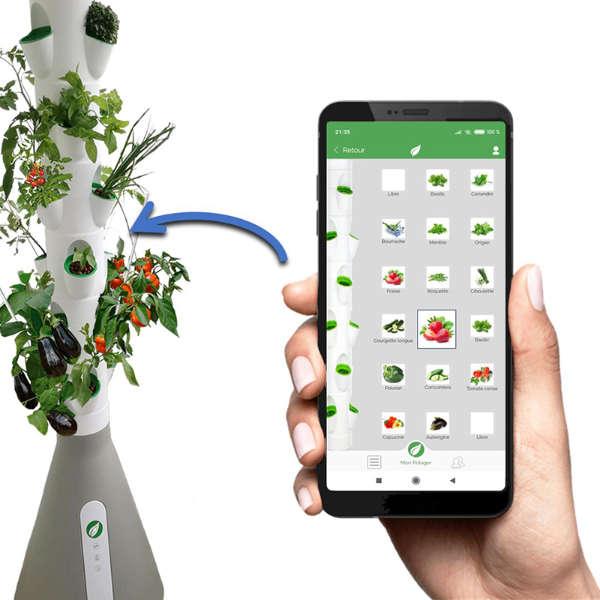 Le Home Potager et son application mobile