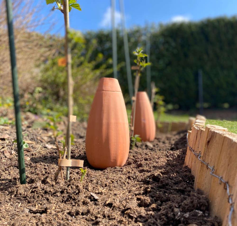 Irrigation écologique avec les ollas Wepot