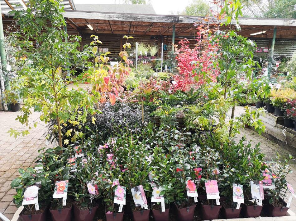 jardinerie-poullain