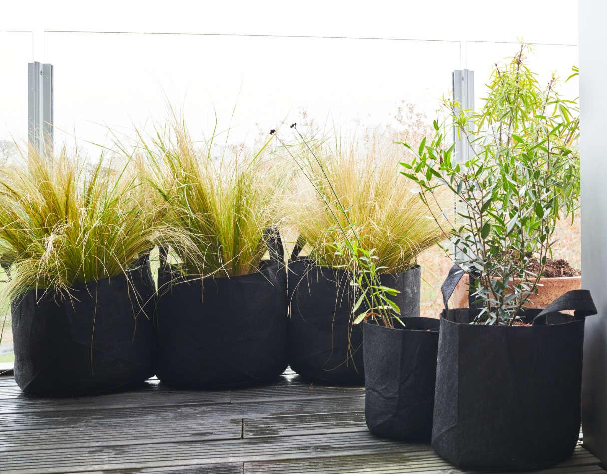 Exemple de réalisation végétale sur mesure